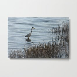 Grey Heron 4 Donegal Ireland Metal Print