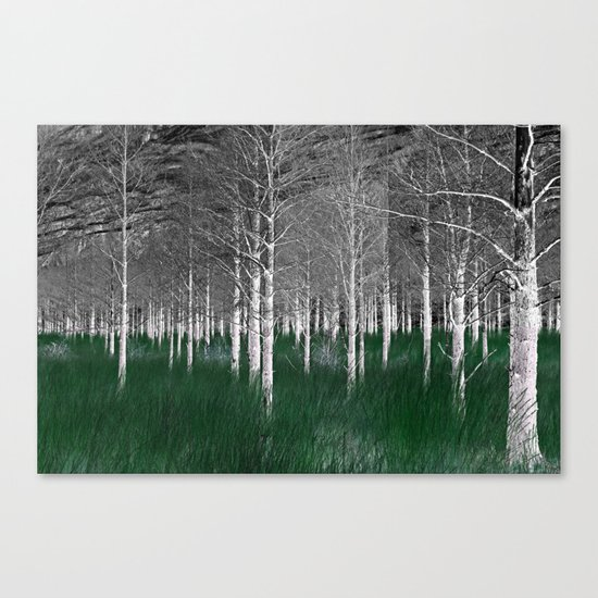 The woods are lovely, dark and deep part 1 Canvas Print