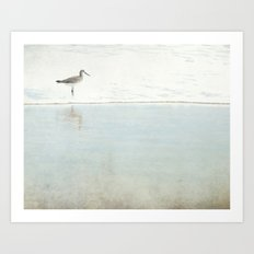 Reflecting Sandpiper Art Print
