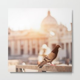 pigeon on san peter church Metal Print