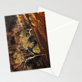 Eucalyptus trees in evening sunlight, Karijini National Park, Western Australia Stationery Cards