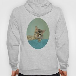 Cute Things Come in Kitty Packages Hoody