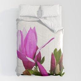 Rosy spring Magnolia Comforters