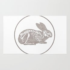 In which a rabbits anatomy is observable  Rug