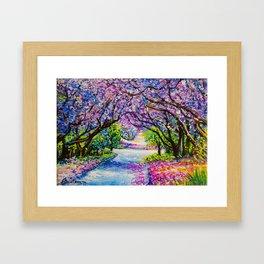 Path Of Jacaranda Trees Framed Art Print