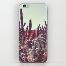 Cacti I iPhone & iPod Skin