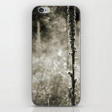 Autumn Sepia iPhone & iPod Skin