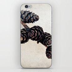 Cones iPhone & iPod Skin