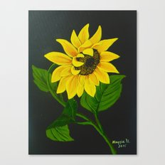 Gracefull Canvas Print