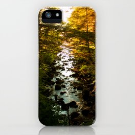 The Salmon's End iPhone Case
