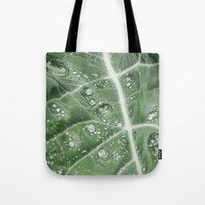 Rain water on a Purple Cauliflower leaf. Norfolk, UK. Tote Bag