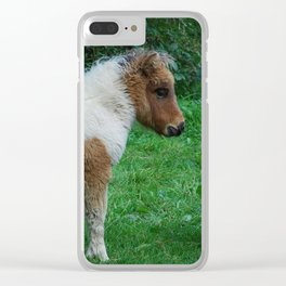 Fluffy Adorable Dartmoor Pony Clear iPhone Case