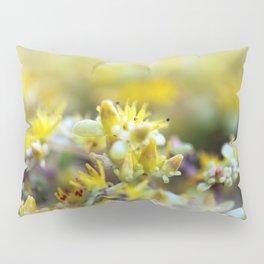 Yellow Sedum Pillow Sham