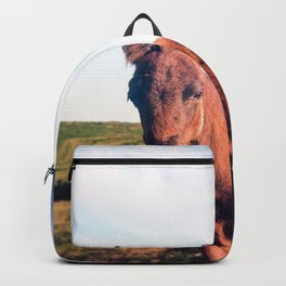 Dartmoor Pony Portrait Backpack