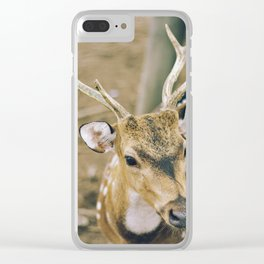 deer portrait Clear iPhone Case