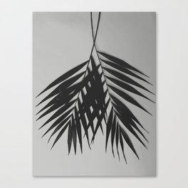 Palm Leaves #6 #foliage #decor #art #society6 Canvas Print
