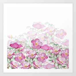 Pink Watercolor Beach Rose Border Print Art Print