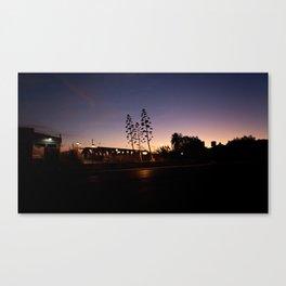 Across the Avenue Canvas Print