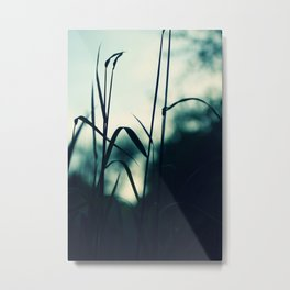 summergrass - eight Metal Print