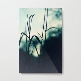 summergrass - eight Metal Print
