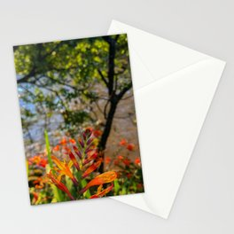 if being mainstream doesn't float your boat, follow your own dream! Stationery Cards