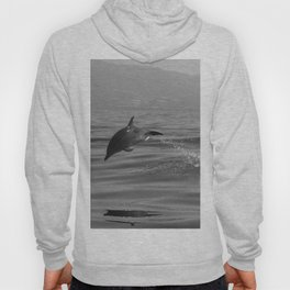 Black and white dolphin race in the ocean Hoody