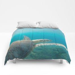 Pacific Pet Comforters
