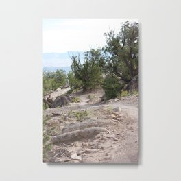 Trail on Race Day Metal Print