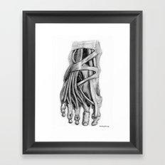 Foot Framed Art Print