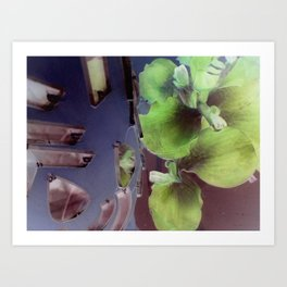 Nega Interactions Art Print