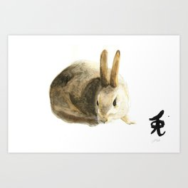 CHINESE ZODIAC (Rabbit)  Art Print