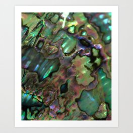 Oil Slick Abalone Mother Of Pearl Art Print