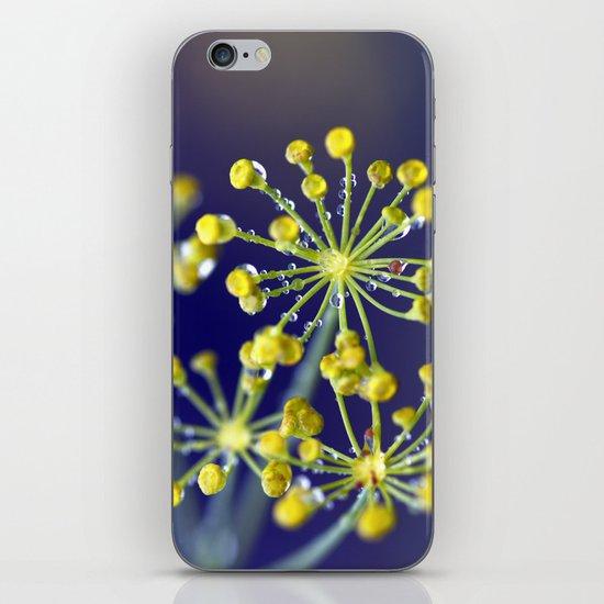 Dill 6186 iPhone & iPod Skin