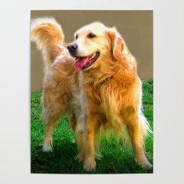 Golden Retriever - Happy Dog Poster