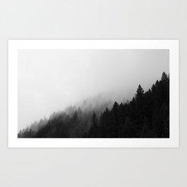 foggy little trees Art Print