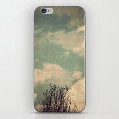 Unkindness iPhone & iPod Skin