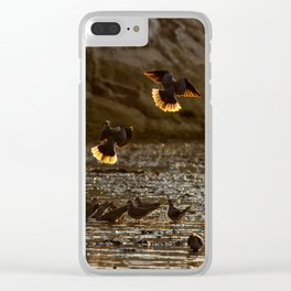 Against the light Clear iPhone Case