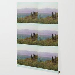 Saguaro Cactus by the Sea Wallpaper