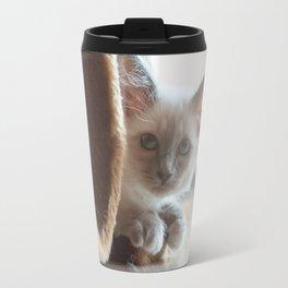 Portrait of white long hair birman cat with blue eyes. Travel Mug