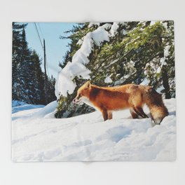 Happy Red Fox in Fresh Snow in Algonquin Throw Blanket