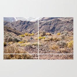Death Valley view 02 Rug