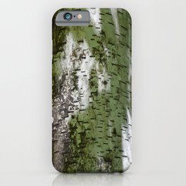 Birch Bark Pattern Green and White Wood Pattern Bring the Outdoors In iPhone Case