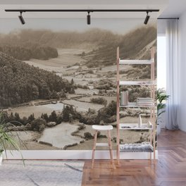 Misty valley Wall Mural