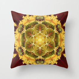 Mandalas for Times of Transition 8 Throw Pillow
