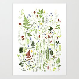 Branched Plants Art Print