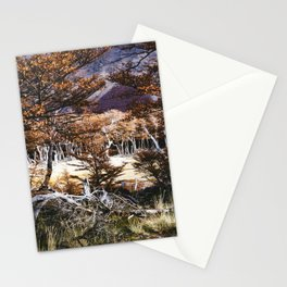 Fall in Patagonia, Argentina Stationery Cards