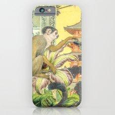 Curious Slim Case iPhone 6s