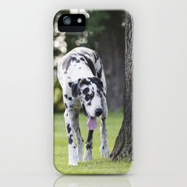 Harlequin Great Dane Next to Old Oak Tree iPhone Case