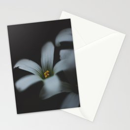 Detailed flower Stationery Cards