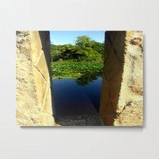 Framing a Pond Metal Print